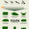 Во что превращаются добровольческие батальоны (ИНФОГРАФИКА)