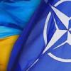 В Киеве состоится заседание Совместной рабочей группы «Украина-НАТО»