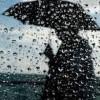 Погода на завтра: в Украине дожди, температура до +31