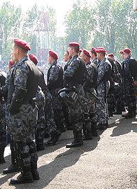 200px-Беркут_Украина_002